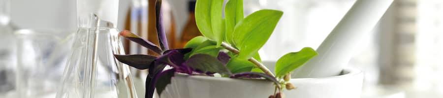 Biokap looduslähedased juuksevärvid