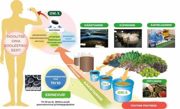 Dr. Ohhira probiootikumide valmistamine